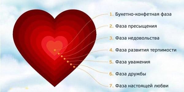 фазы любви