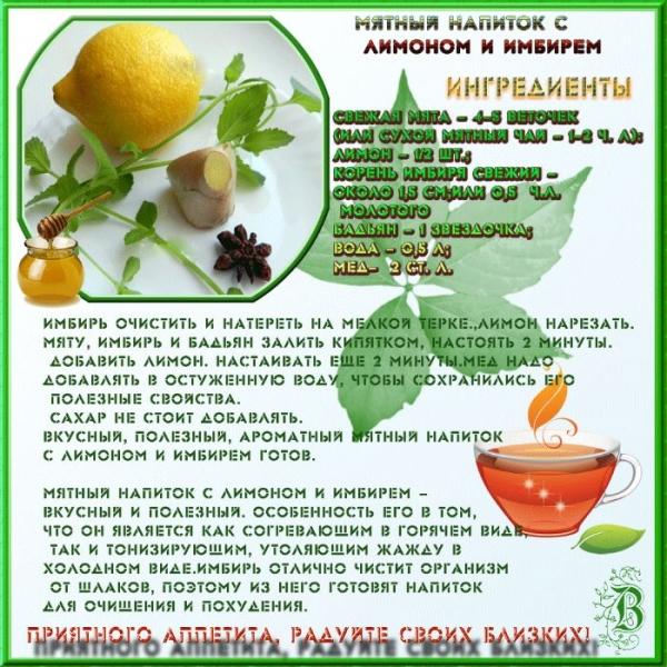 рецепт мятного напитка с имбирем