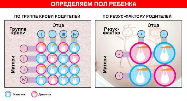Определение пола ребенка по группе крови