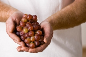 гроздь винограда в руках
