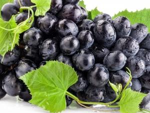 черный виноград с листиками