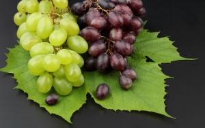 синий и зеленый виноград