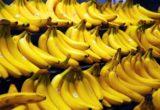 ветки бананов