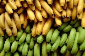 зеленые и желтые бананы