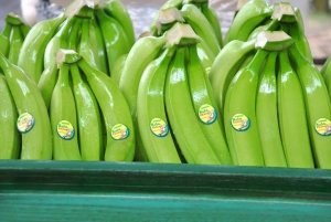 зеленые бананы в ящике