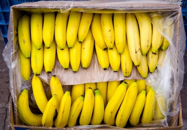 бананы в коробке