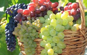 разные виды винограда в корзине