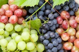 разные виды винограда