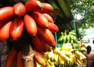 желтые и красные бананы