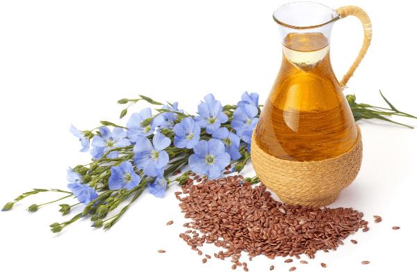 цветы, семена и масло льна