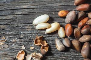 скорлупа кедровых орешков и сами орешки