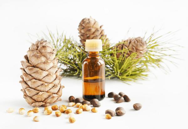 кедровые шишки, орешки и масло