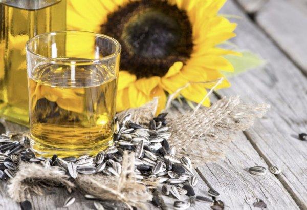 масло в стакане, семечки и цветок подсолнечника
