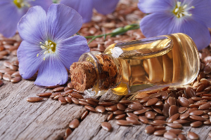 семена, цветы и масло льна
