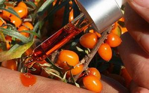 облепиховое масло на кожу
