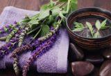 Состав лекарственного растения