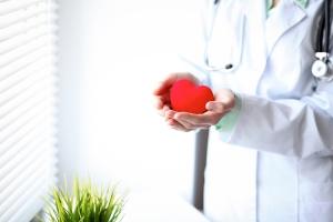 врач держит сердечко в руках