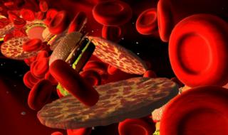 вредные продукты в крови
