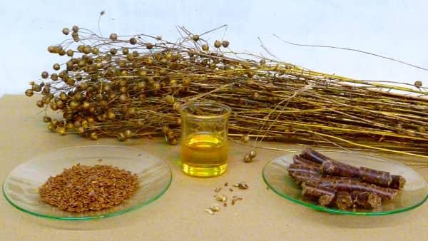 сухой лен, семена, масло