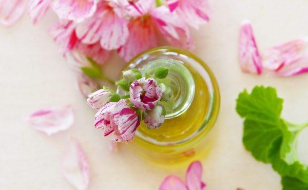 масло, цветы