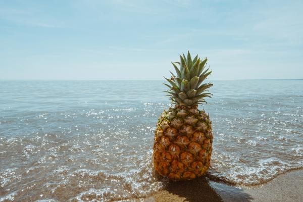 ананас, море