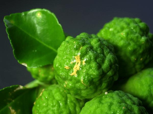 плоды бергамота на черном фоне