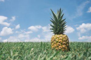 ананас на траве