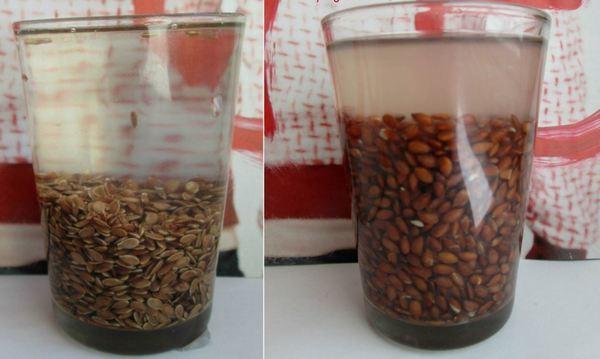 семена льна в стакане с водой