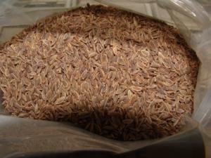 семена укропа в пакете