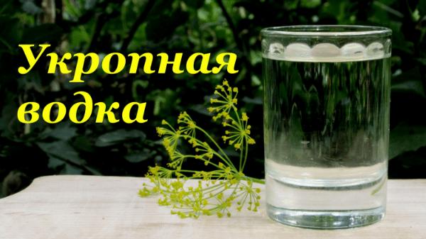водка на укропе