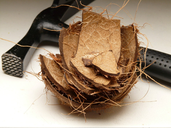 скорлупа кокоса и молоток