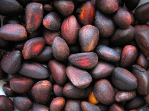 орешки