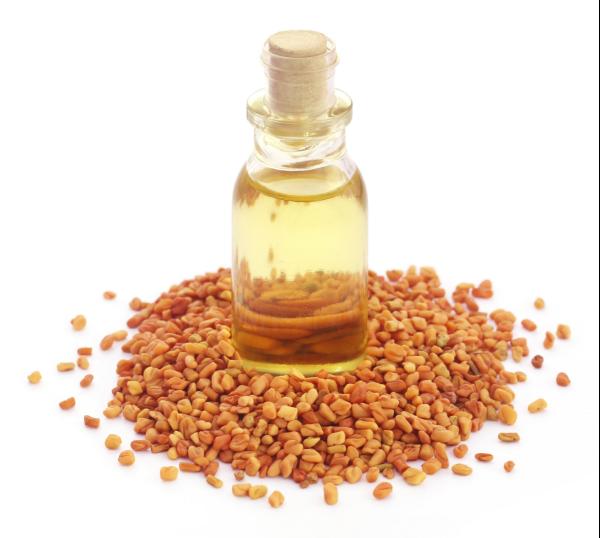семена и масло пажитника