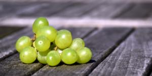 гроздь зеленого винограда