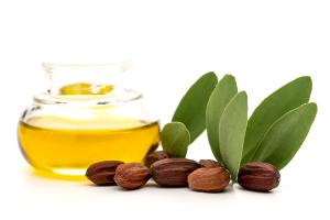 масло жожоба и орехи жожоба