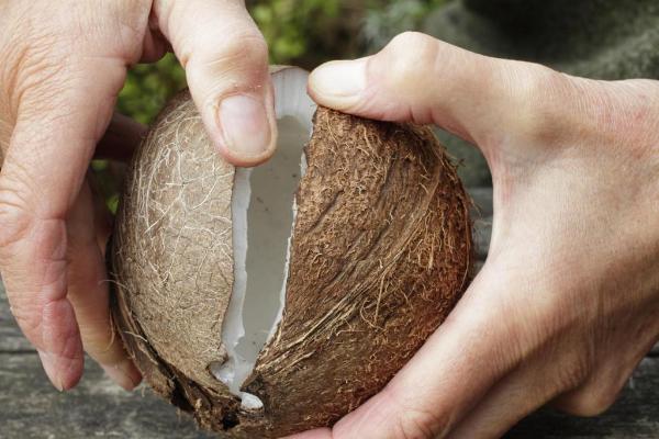 кокос в руках