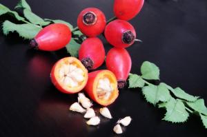разломанные ягоды шиповника