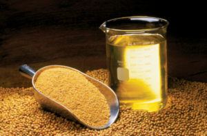 семена и масло амаранта