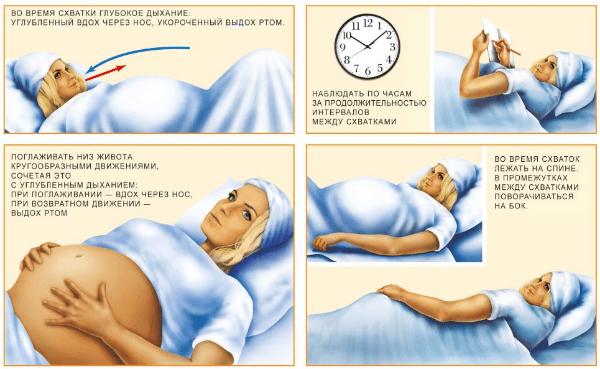 первый период родов, картинка
