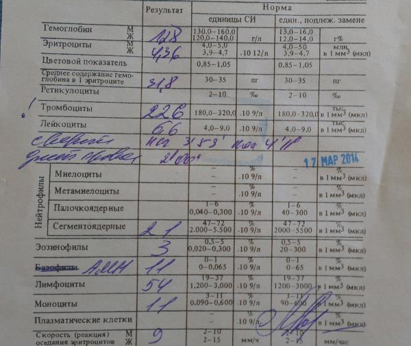 анализ крови на бумаге