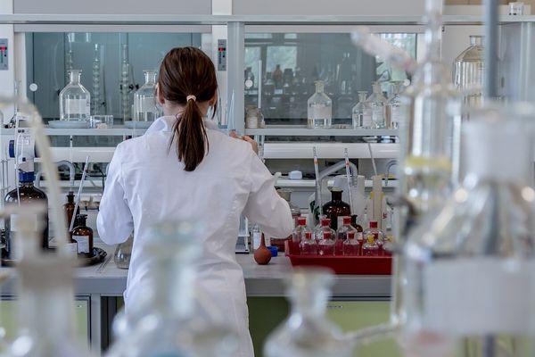 Повышенное содержание эритроцитов в моче у мужчин и женщин