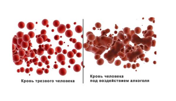 кровь и алкоголь