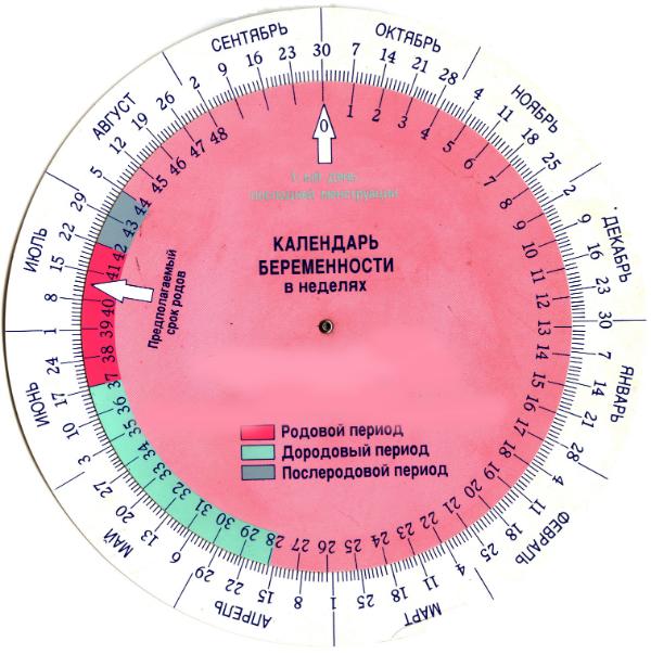 календарь акушерский для беременности