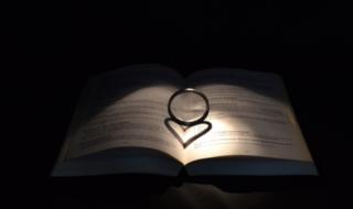 кольцо на страницах книги