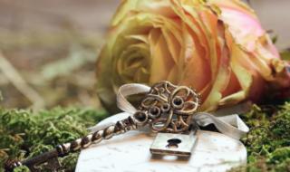 роза и ключ