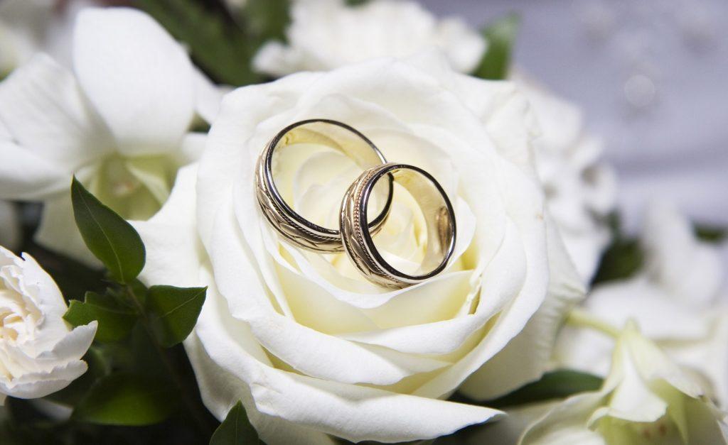 кольцо на розе