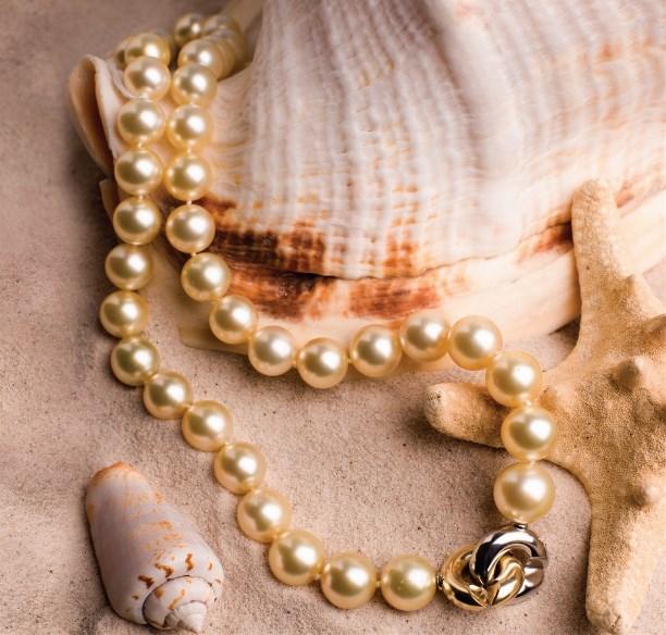 ракушки, жемчуг и песок