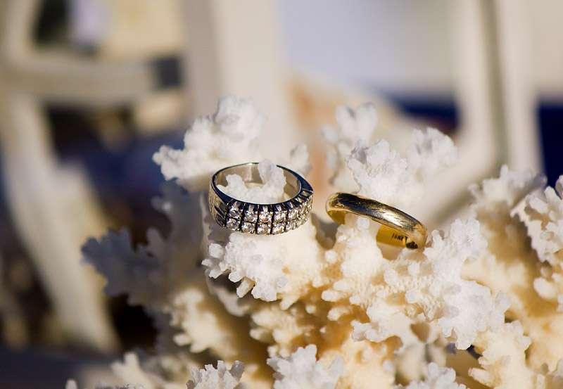 кольца, кораллы