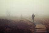 силуэт в тумане
