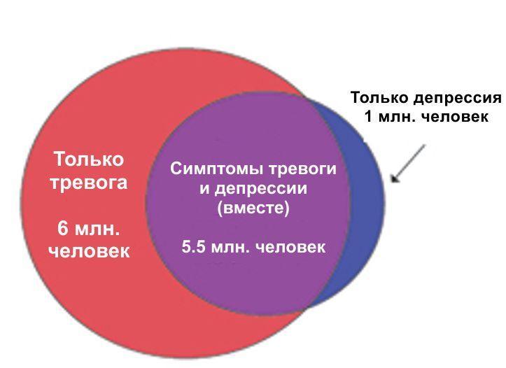 кружки статистики